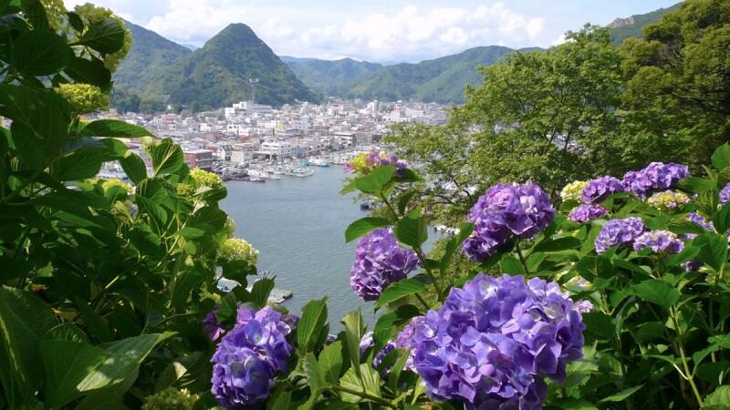 【MiKU玩日本】6月到東京就是要拍繡球花!不用人擠人的2大私藏祕境首度公開