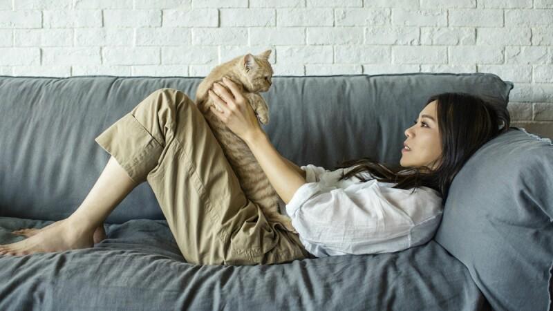 蔡健雅北中高三場小巡迴打頭陣秒殺完售,自家拍攝宣傳影片攜愛貓親密入鏡