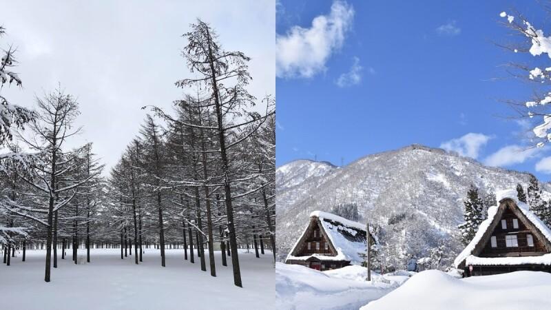 冬天追雪好浪漫!2019年日、韓各地「初雪」預測時間大公開,快走進絕美銀白世界中