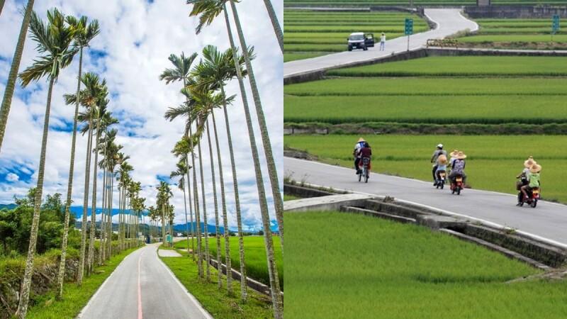 【台東景點】全台首座自行車專用道「關山環鎮自行車道」必踩點!12公里飽覽稻浪及山林,四季不同農村風情超愜意