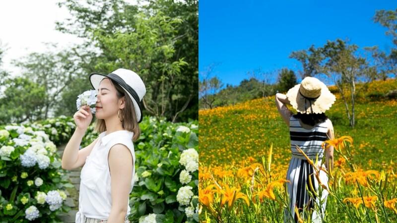 一次把夢幻繡球花、金針花拍好拍滿!台東知本老爺酒店帶你賞夏季繽紛花海,晚上再泡美人湯溫泉
