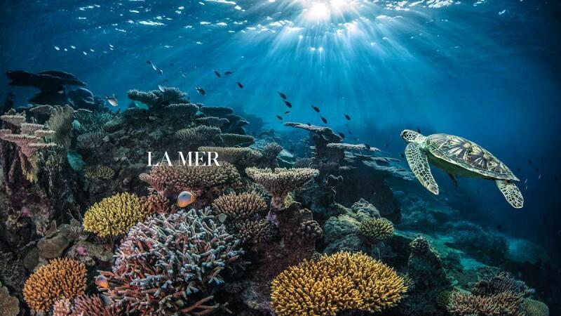 讓我們為地球守住這片蔚藍!海洋拉娜總經理蔡易伶、最愛海的蔡詩芸,談起海洋:「每個人用一點心,讓藍色大海重新充滿生命與希望!」