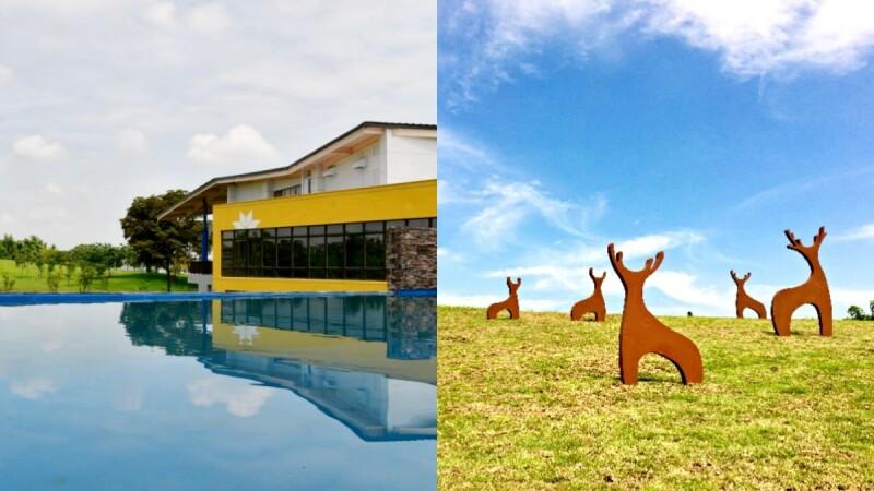 媲美森林遊樂園!台南新景點「官田遊客中心」耗時3年完工,小鹿、白鶴地景藝術融入大草原療癒滿分