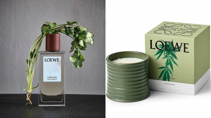 LOEWE竟然推出香菜香氛噴霧!2020年植物精華居家香氛系列還有大麻、甜菜根蠟燭