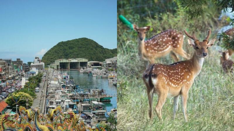 【台灣深度旅遊】全台8條社區文化小旅行路線,深度走訪社區秘境好好玩!