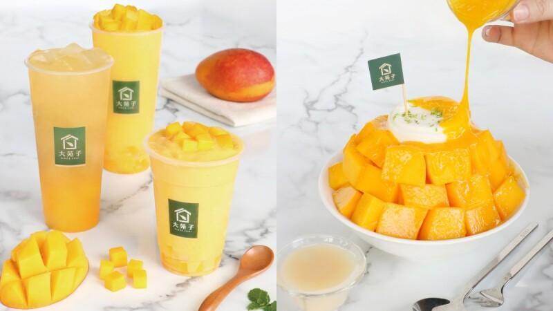 芒果季搶先開跑!大苑子推3款愛文芒果冰沙飲品、全新冰品,準備好迎接盛夏美好的酸甜滋味