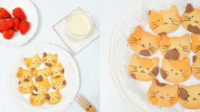 超簡單!小紅書爆紅「貓咪曲奇餅乾」食譜&做法教學大公開,即使是烘焙新手也能輕鬆完成