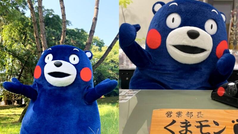 熊本熊變藍色了!換上東京奧運「阿波藍」新造型萌度升級,整身的吸睛限定色其實大有來頭