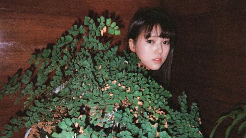 萌力覺醒 成為蕨類媽媽的森林精靈,項婕如