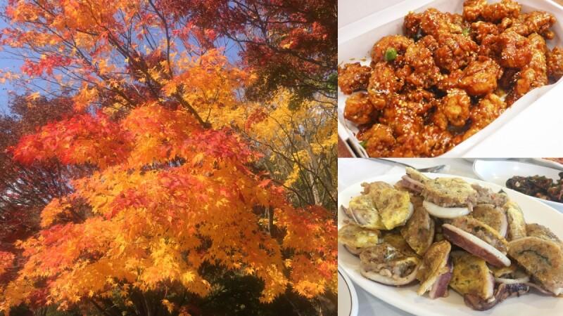 【Julia韓國觀察筆記】秋天賞楓季開跑!從束草到雪嶽山,追楓還能吃美食