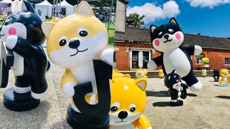 88隻柴犬集體賣萌!韓國超人氣柴犬「SHIRO & MARO」快閃華山,亞洲巡迴展覽首站登台