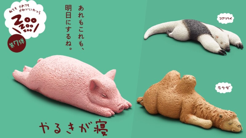 睡好睡滿!《ZooZooZoo》休眠動物園系列第七彈推出,快跟小豬、貓咪、食蟻獸一起大睡特睡