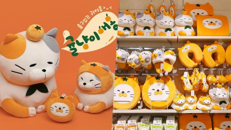 貓奴們注意!韓國Butter推出「橘子貓」生活小物,折手貓咪們圓滾滾模樣爆炸可愛