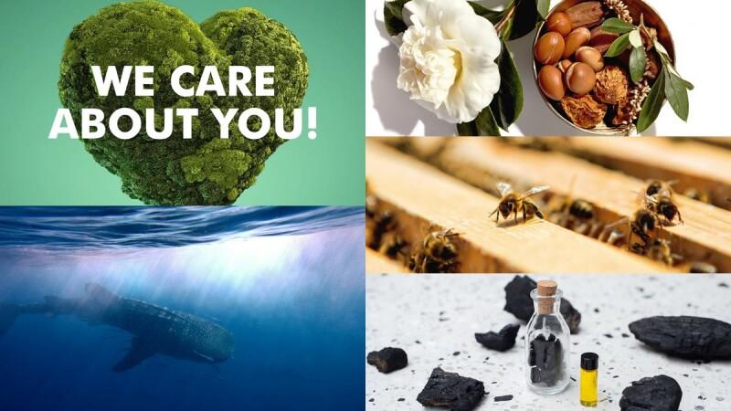 為永續經營而努力!這些品牌的過去、現在與未來,都不曾遺忘我們居住的地球保護!