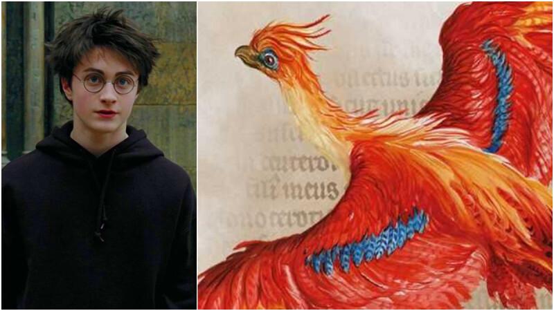 《哈利波特:魔法簡史》特展上線Google Arts and Culture!獨家手稿、插畫、魔法課程大公開