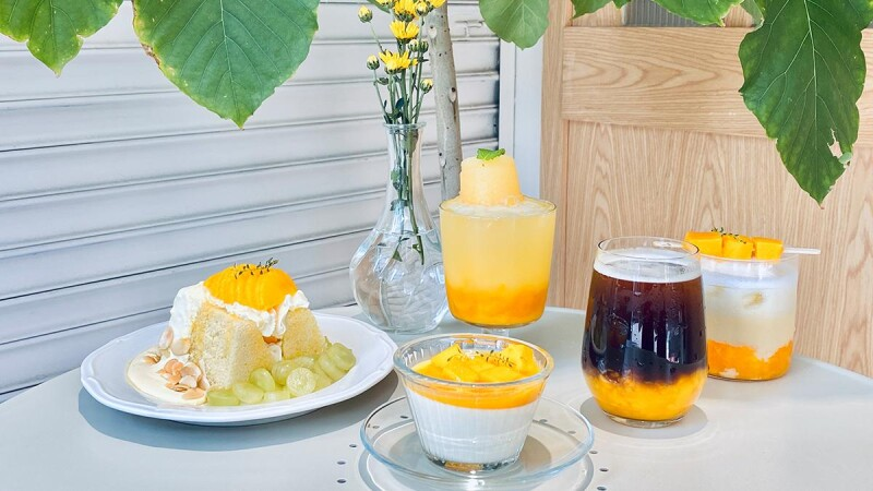 芒果控必吃!Shun Coffee推5款全新芒果甜點、飲品,必吃芒果戚風蛋糕滿滿餡料超療癒