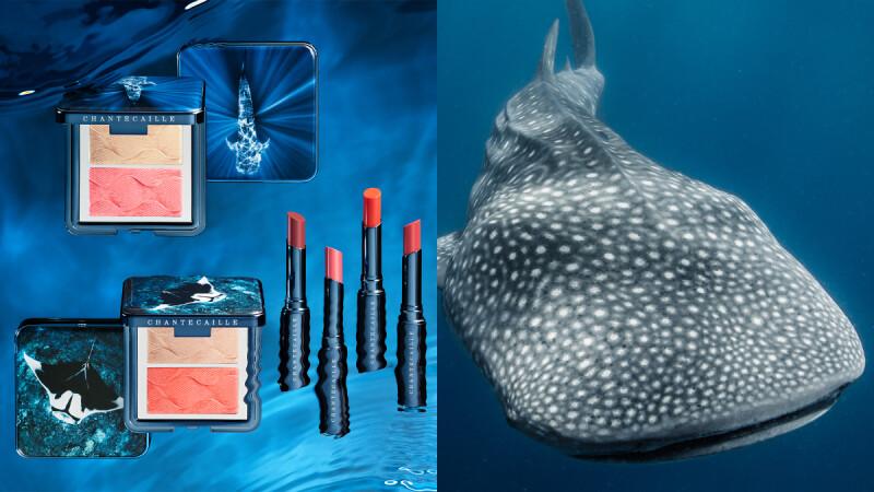 聽海哭的聲音,2020香緹卡保護鯨鯊與瀕危鬼蝠鱝,合作WildAid推出夏季蔚藍海洋慈善彩妝