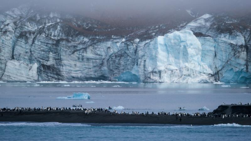 【南極旅遊】企鵝、冰山、探險船!探索世界盡頭 ,停留在大自然最風光的冰藍景色