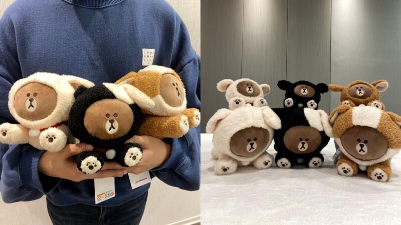 LINE FRIENDS熊大變超可愛狗狗!獨家開箱全新Puppy系列玩偶、鑰匙圈,三隻一起抱在懷中幸福破表