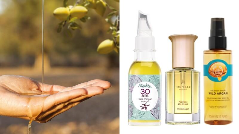 保養界中的「液態黃金」摩洛哥堅果油,神救援乾燥頭髮、臉蛋、身體,這5個保養加分小撇步一定要學會