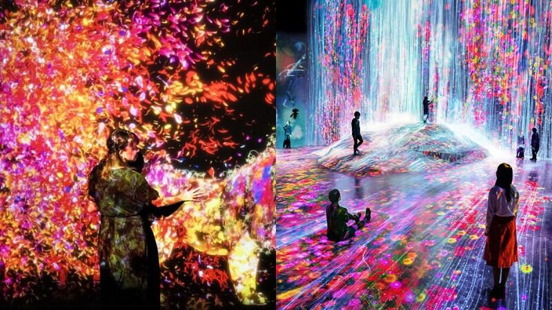 日本《teamLab Future Park未來遊樂園》6月登台!占地700坪、9大展區,絕美互動式藝術體驗展必拍一波