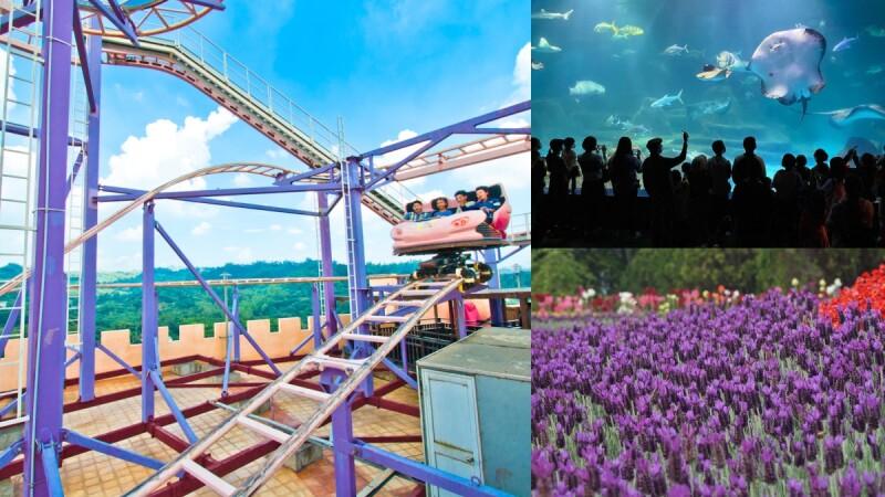 兒童節連假去哪玩?全台5大遊樂園活動優惠整理,12歲以下免費、十萬株薰衣草花海…還能託管小朋友