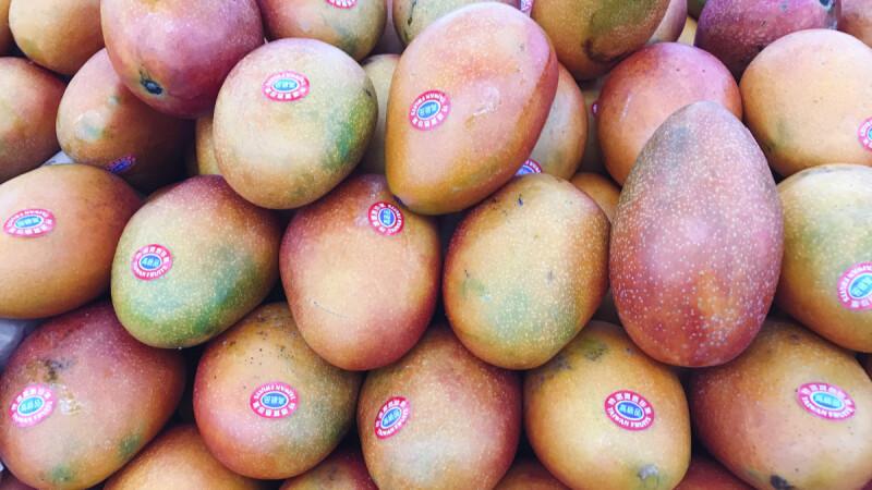 芒果有毒、吃了皮膚癢?原因竟是出在這!2方法不過敏安心大口吃