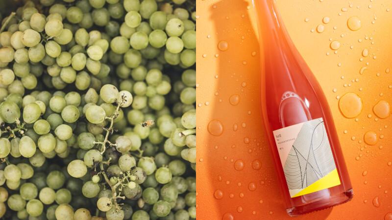 釀出台灣頂級葡萄酒的威石東酒莊,2021夏季新酒款上市,錯過只能再等一年
