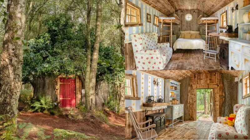 維尼控人生清單!Airbnb打造「小熊維尼樹屋」,住進童話世界夢想成真