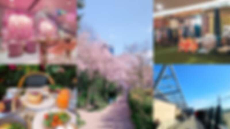 【Meg in London座標倫敦】倫敦最新必去5大景點!能賞櫻的Swiss Cottage、網紅最愛「粉紅咖啡」Elan Café...