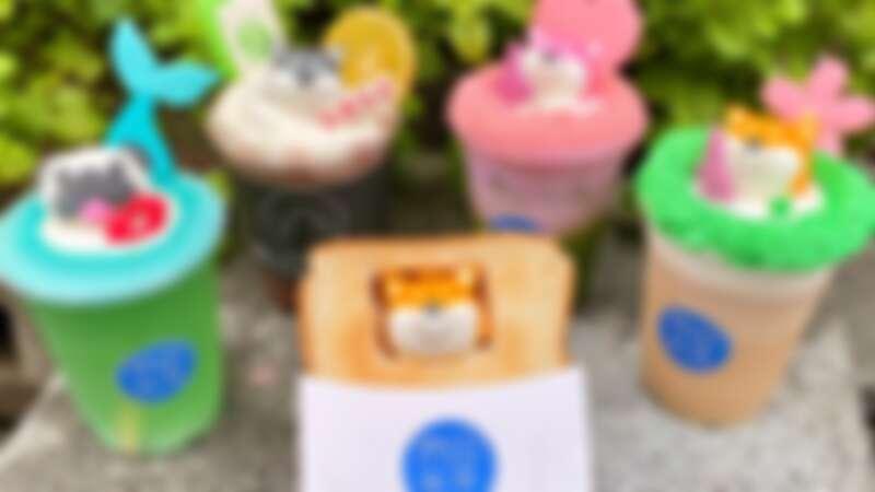 【東區美食】雨田先生手沖飲料吧推柴犬棉花糖厚吐司,超療癒柴犬飲品超萌登場
