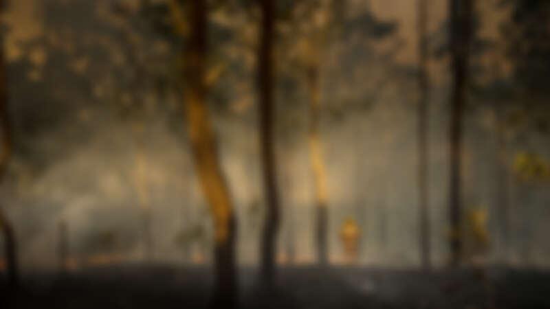 餘燼裡的告白:2020澳洲大火兩位消防員、受災戶回憶最難忘的一夜