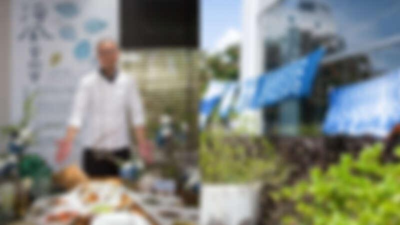 文創設計旅宿讓蚵殼重生!嘉義首度「海風藝術營」生態跨域循環藝術展